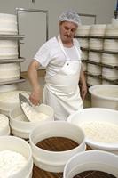 Société fromagère de la Brie