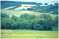 La vallée du Petit-Morin