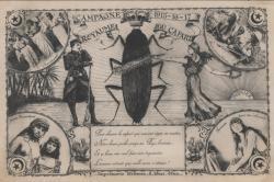 Carte postale coloniale d'Afrique du Nord