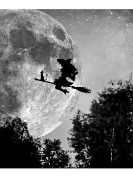 Visuel en noir et blanc, représentant une sorcière volant sur un balai au dessus d'une forêt, une nuit de pleine lune.