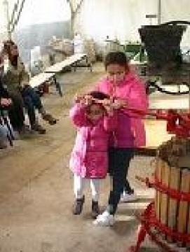 Fabrication de jus de pommes