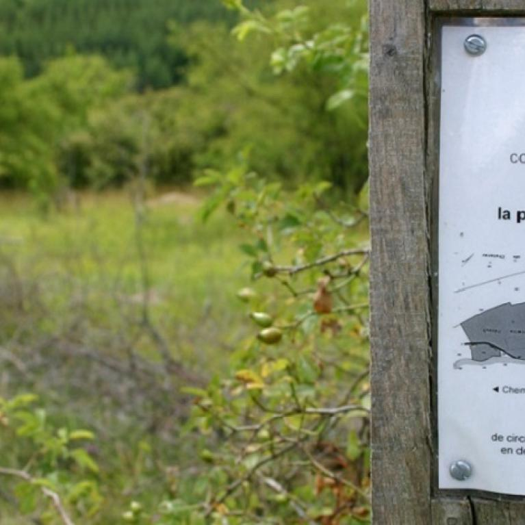 Espace naturel en Bassée - Pro Natura signalée par une affichette sur un poteau en bois