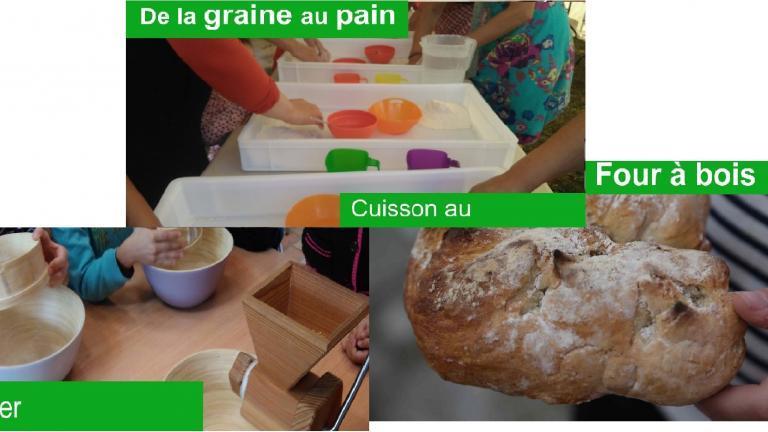 Affiche de l'atelier pain, les étapes de fabrication, le pétrissage, le moulage et la miche de pain qui en résulte